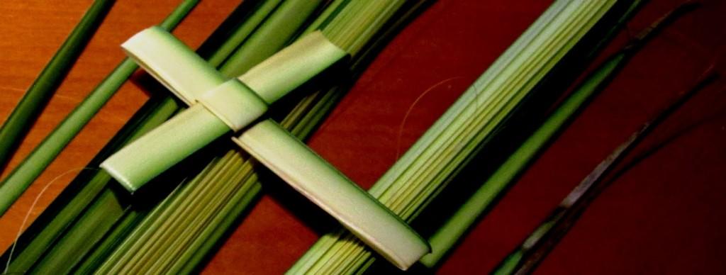 palmcrosses2